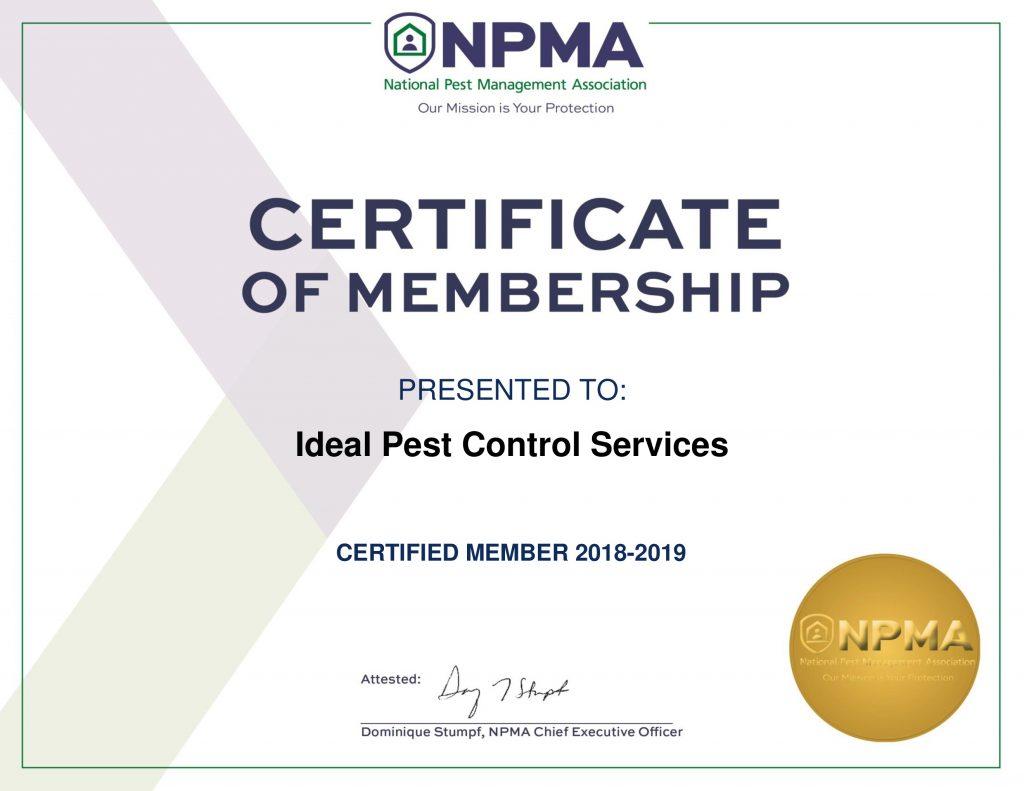 ideal-npma-certificate